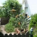 kleiner Garten am Hausgiebel